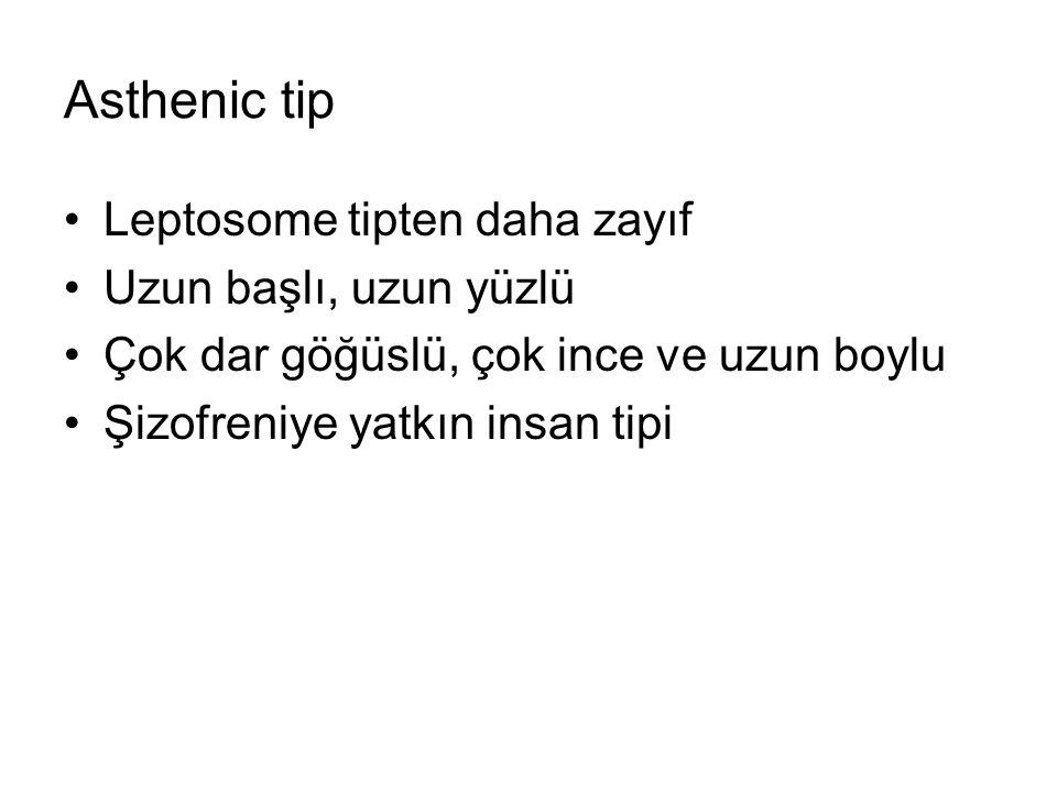 Asthenic tip Leptosome tipten daha zayıf Uzun başlı, uzun yüzlü