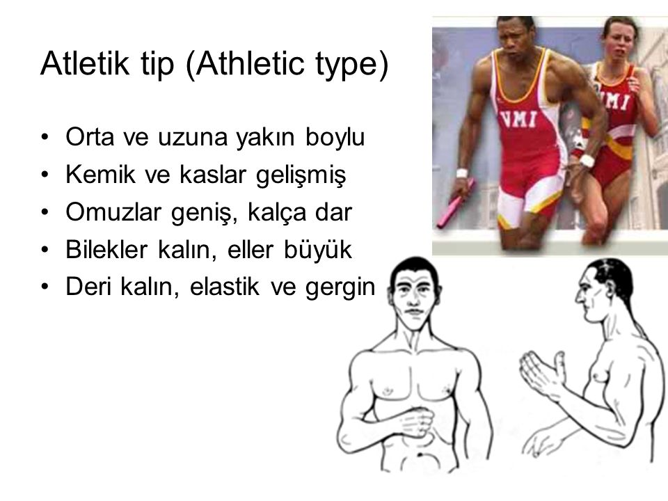 Atletik tip (Athletic type)