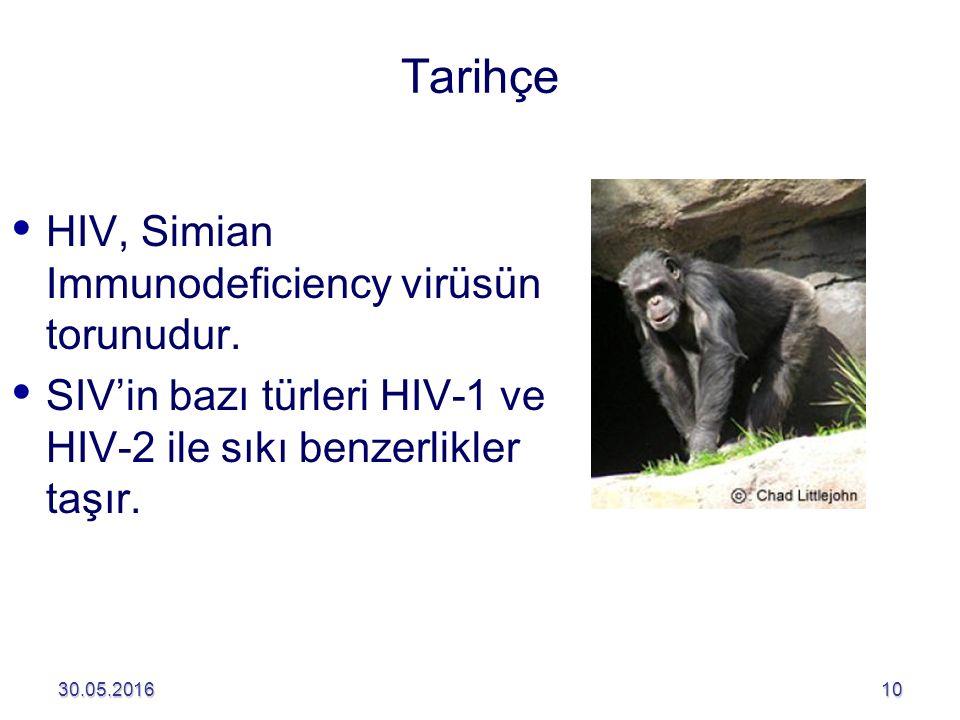 Tarihçe HIV, Simian Immunodeficiency virüsün torunudur.