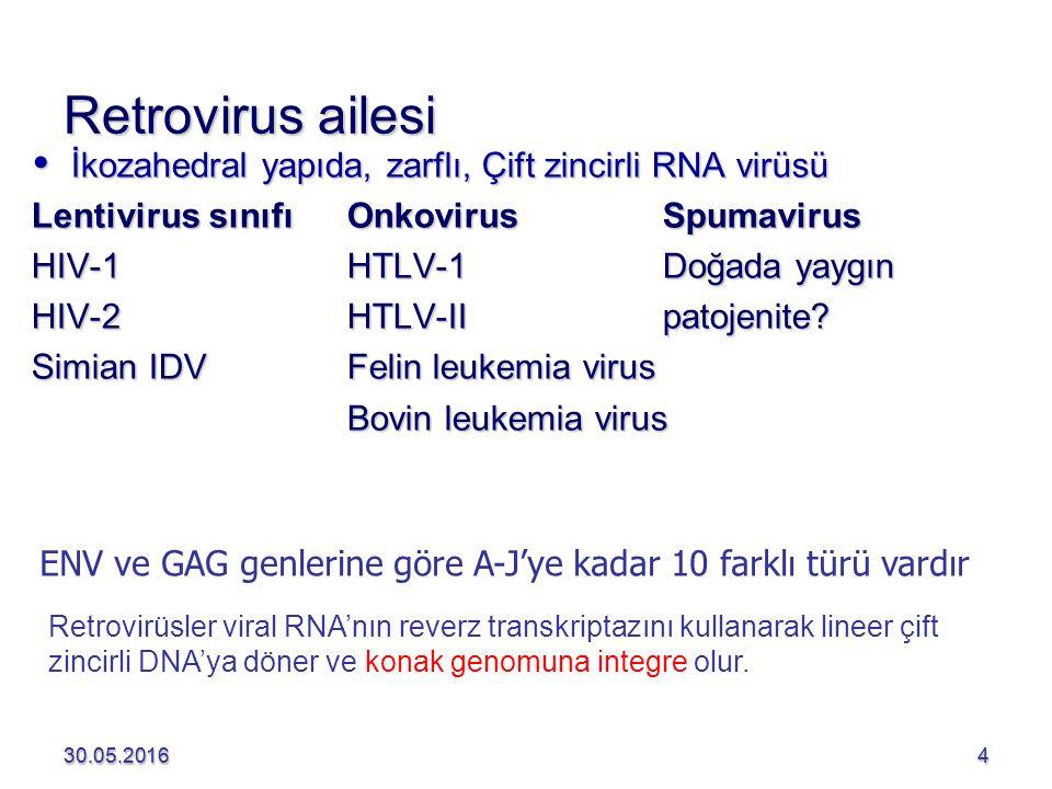 Retrovirus ailesi İkozahedral yapıda, zarflı, Çift zincirli RNA virüsü
