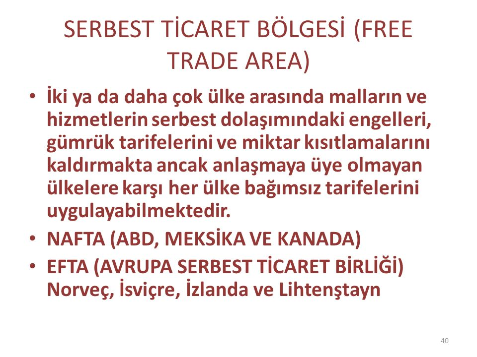 SERBEST TİCARET BÖLGESİ (FREE TRADE AREA)