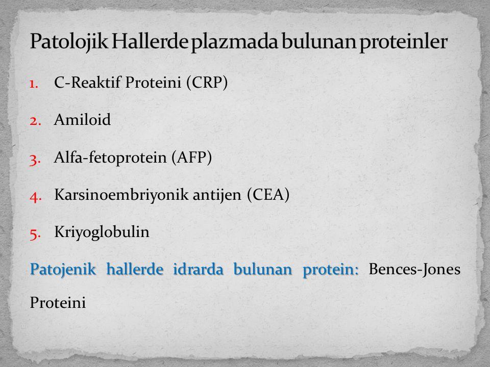 Patolojik Hallerde plazmada bulunan proteinler