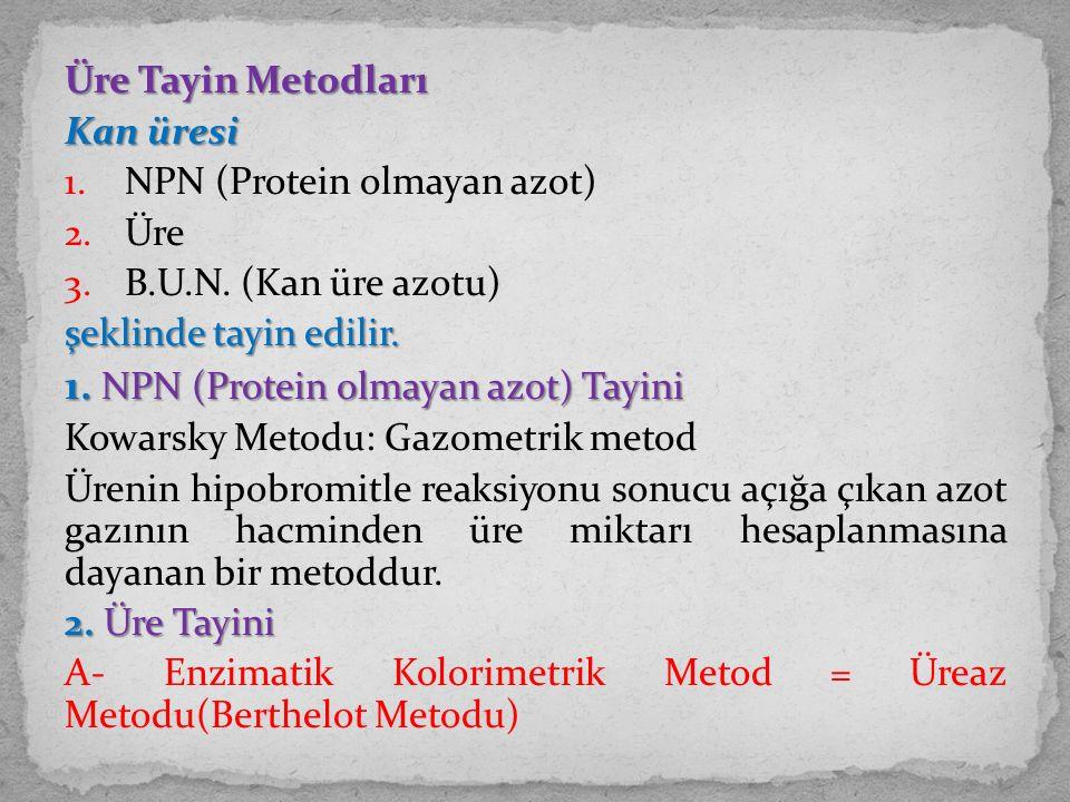 1. NPN (Protein olmayan azot) Tayini