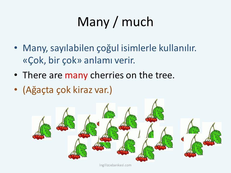 Many / much Many, sayılabilen çoğul isimlerle kullanılır. «Çok, bir çok» anlamı verir. There are many cherries on the tree.