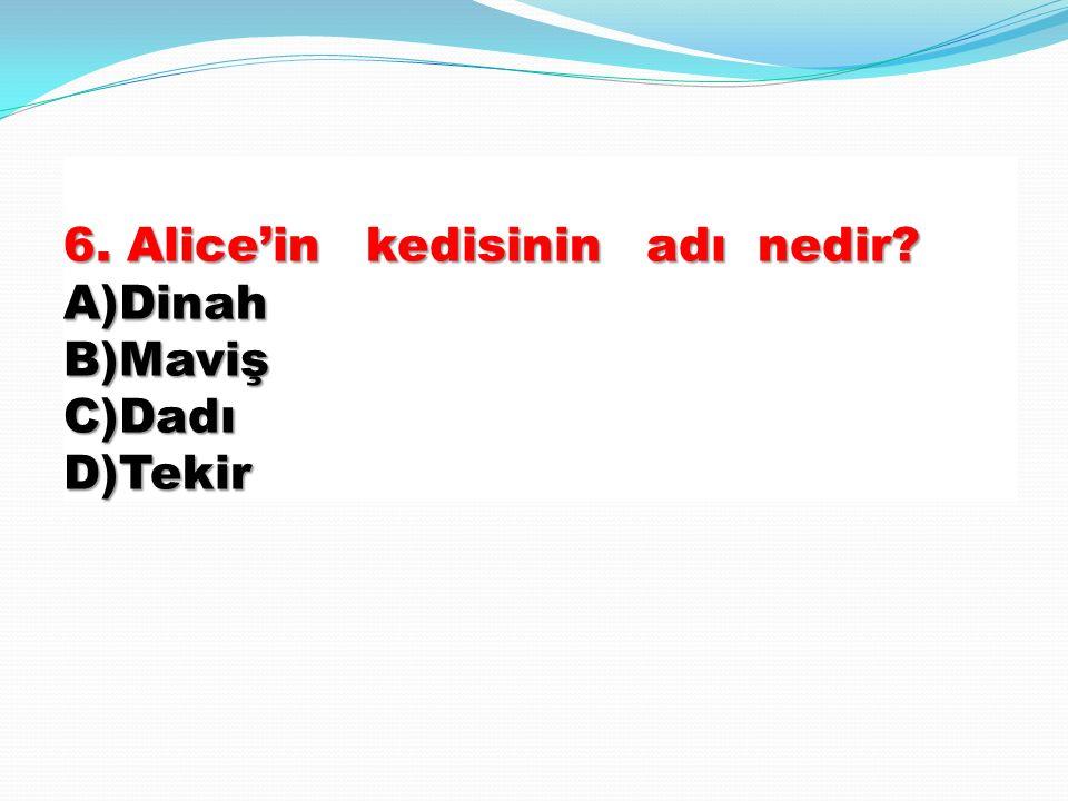 6. Alice'in kedisinin adı nedir A)Dinah B)Maviş C)Dadı D)Tekir