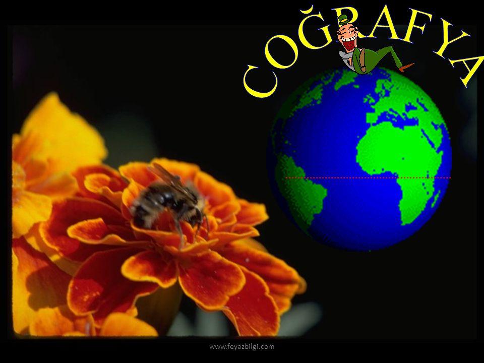 COĞRAFYA www.feyazbilgi.com