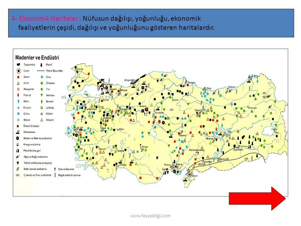 4- Ekonomik Haritalar : Nüfusun dağılışı, yoğunluğu, ekonomik