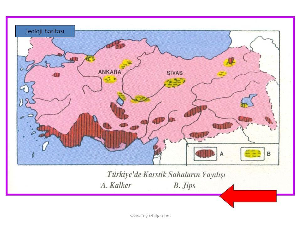 Jeoloji haritası www.feyazbilgi.com