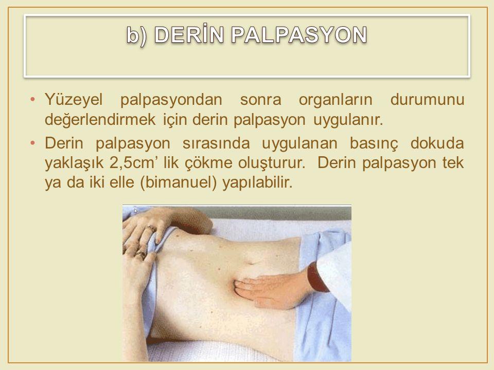b) DERİN PALPASYON Yüzeyel palpasyondan sonra organların durumunu değerlendirmek için derin palpasyon uygulanır.