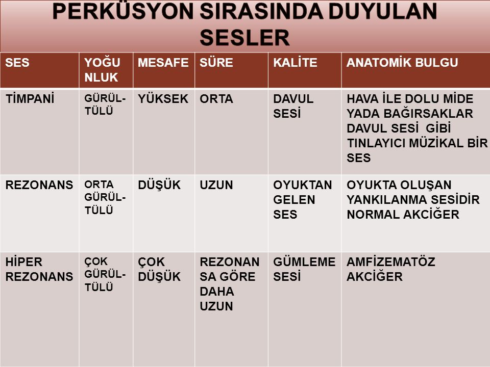 PERKÜSYON SIRASINDA DUYULAN SESLER