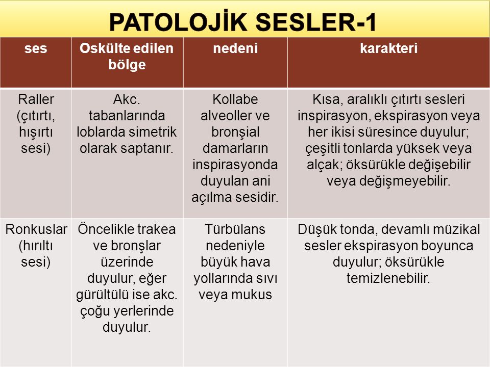 PATOLOJİK SESLER-1 ses Oskülte edilen bölge nedeni karakteri