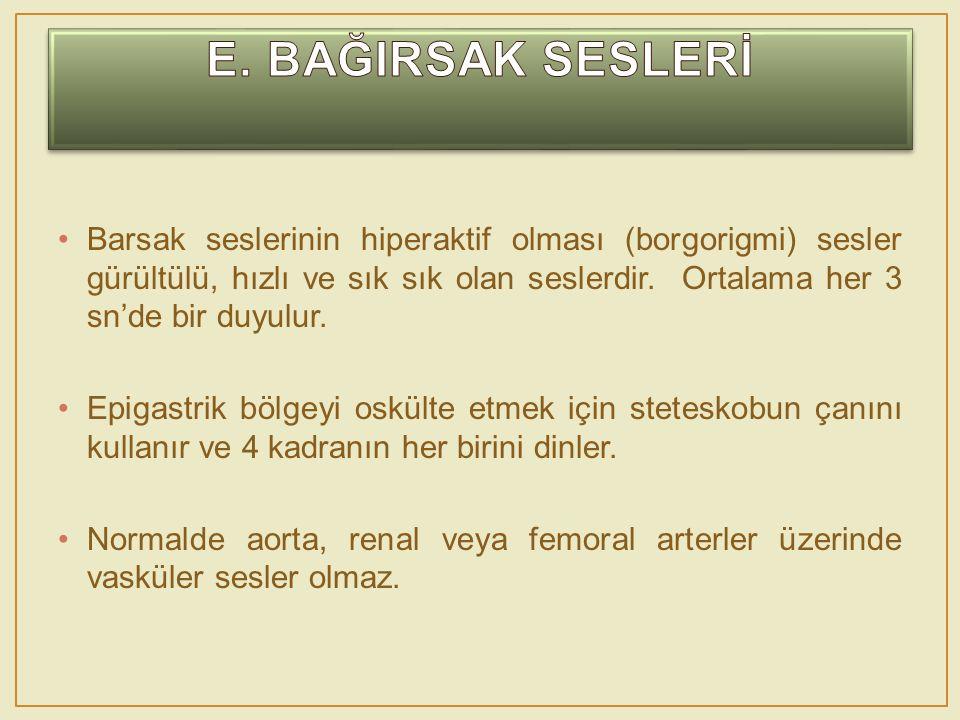 E. BAĞIRSAK SESLERİ
