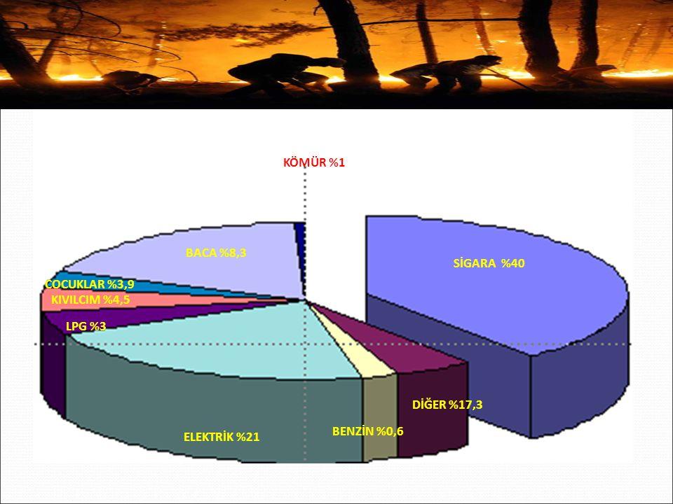 KÖMÜR %1 BACA %8,3. SİGARA %40. COCUKLAR %3,9. KIVILCIM %4,5. LPG %3. DİĞER %17,3. BENZİN %0,6.