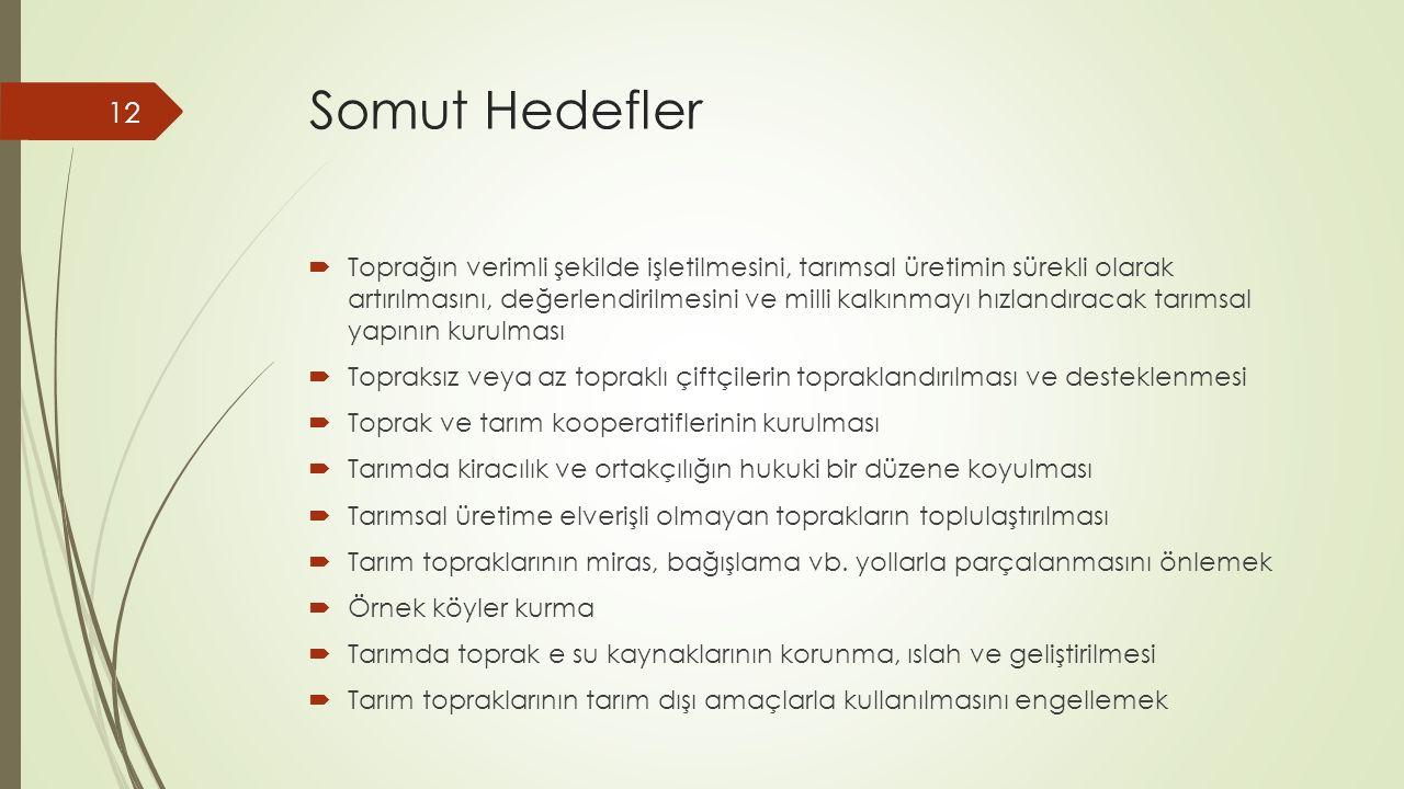 Somut Hedefler