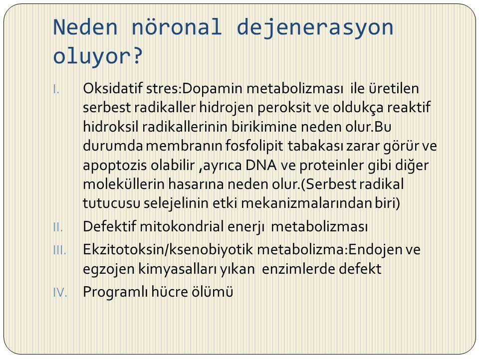 Neden nöronal dejenerasyon oluyor