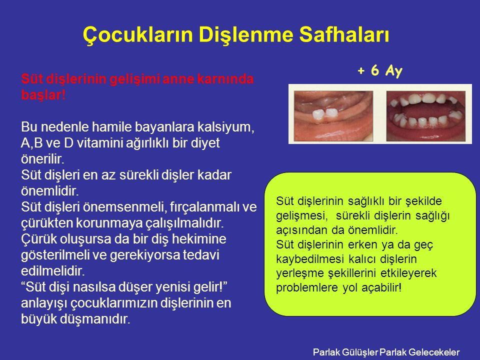 Çocukların Dişlenme Safhaları