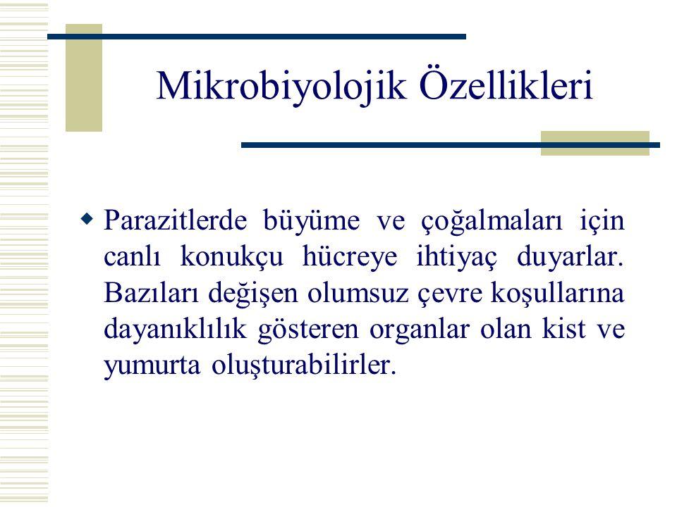 Mikrobiyolojik Özellikleri