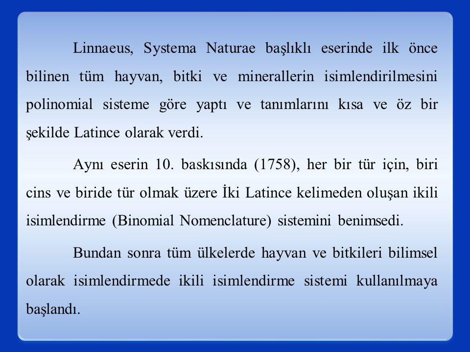 Linnaeus, Systema Naturae başlıklı eserinde ilk önce bilinen tüm hayvan, bitki ve minerallerin isimlendirilmesini polinomial sisteme göre yaptı ve tanımlarını kısa ve öz bir şekilde Latince olarak verdi.