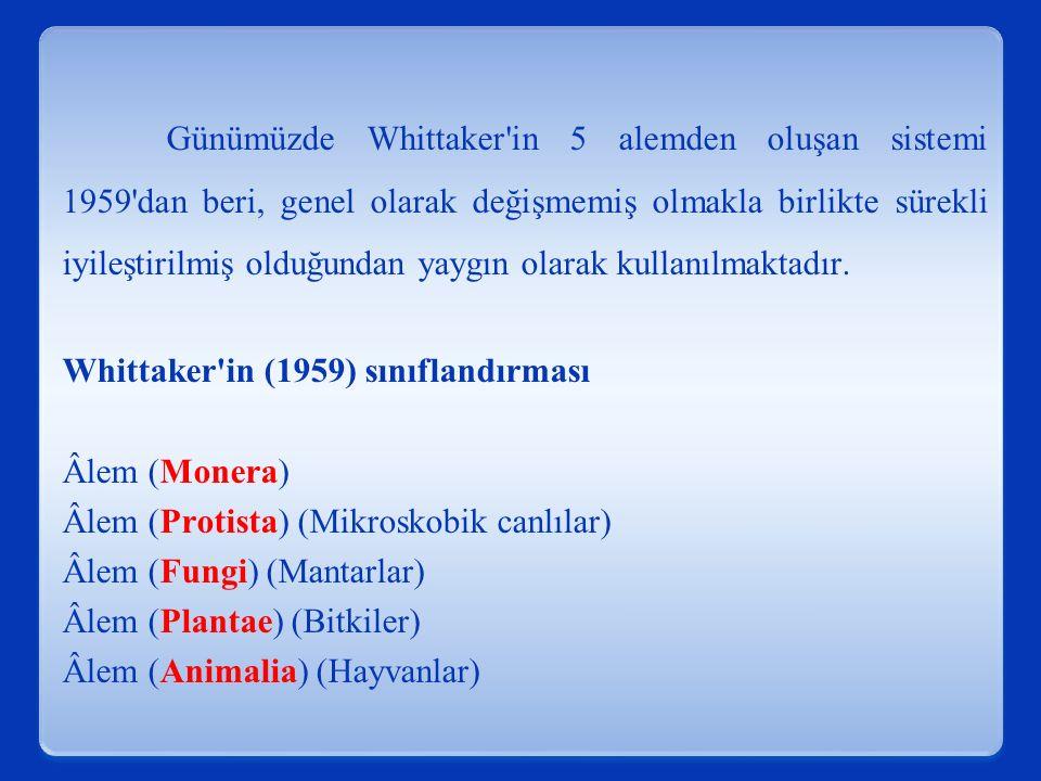 Günümüzde Whittaker in 5 alemden oluşan sistemi 1959 dan beri, genel olarak değişmemiş olmakla birlikte sürekli iyileştirilmiş olduğundan yaygın olarak kullanılmaktadır.