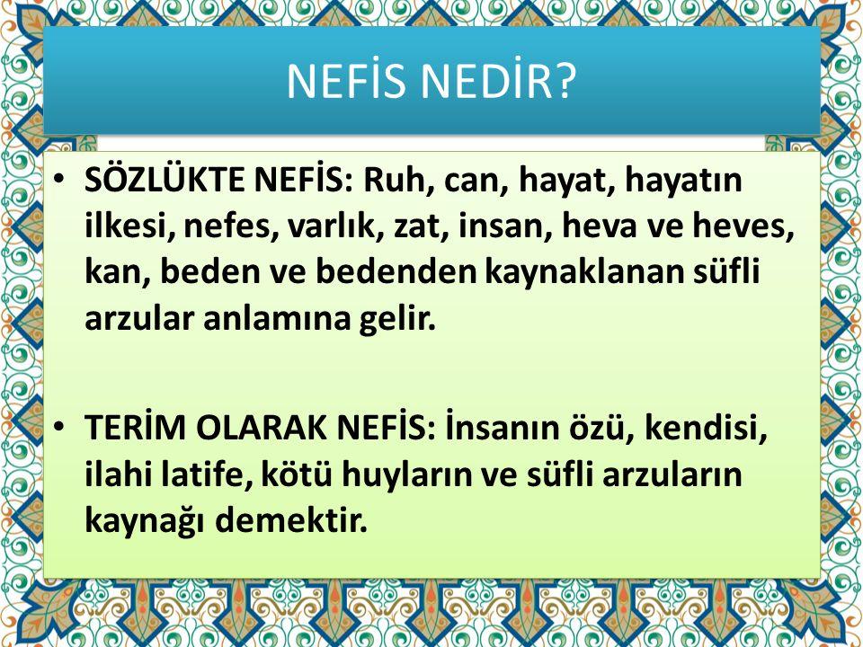 NEFİS NEDİR