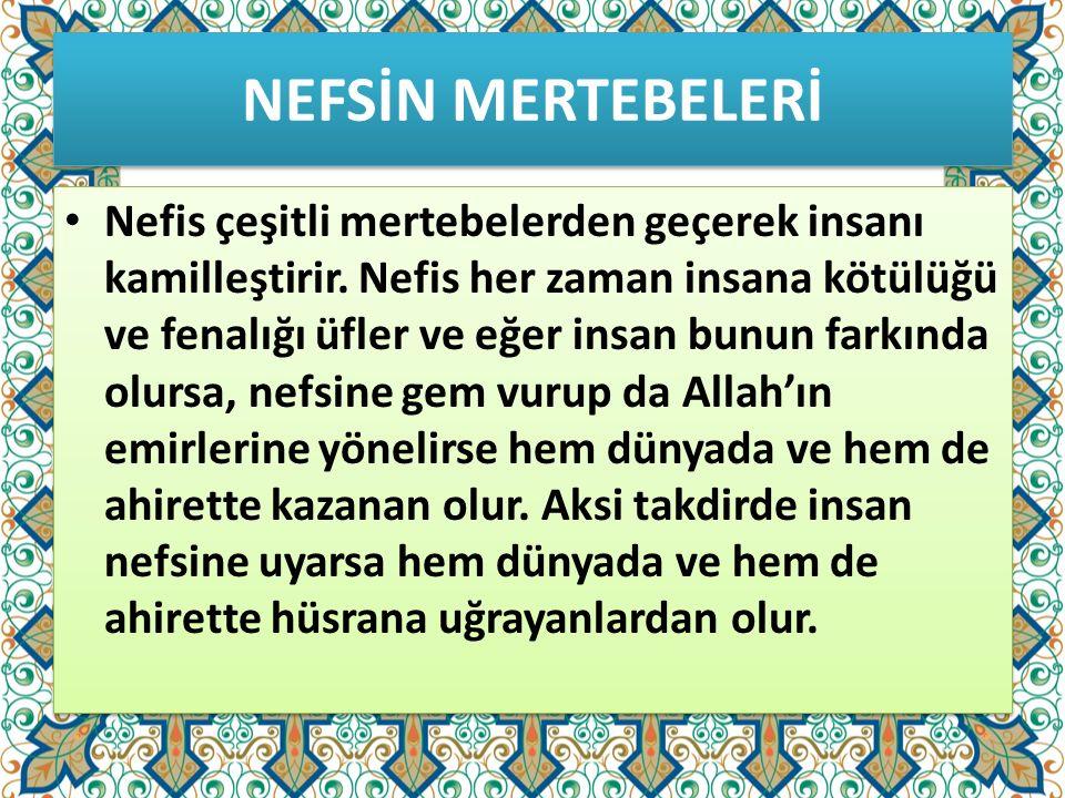NEFSİN MERTEBELERİ
