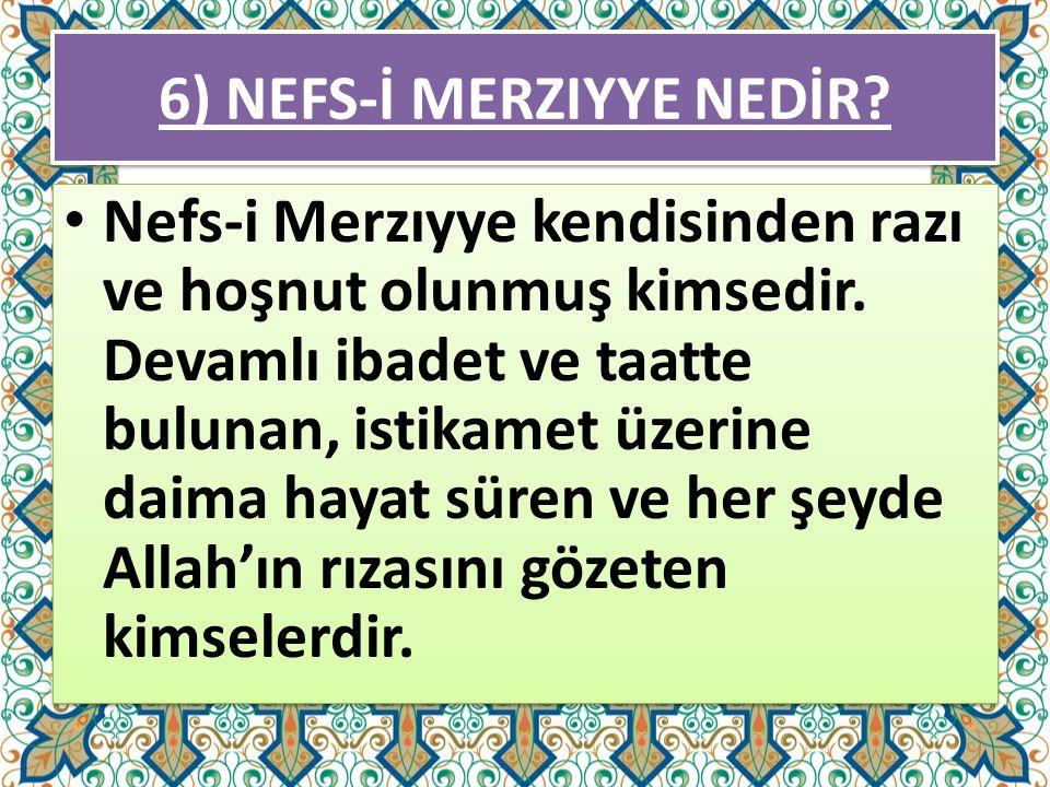 6) NEFS-İ MERZIYYE NEDİR