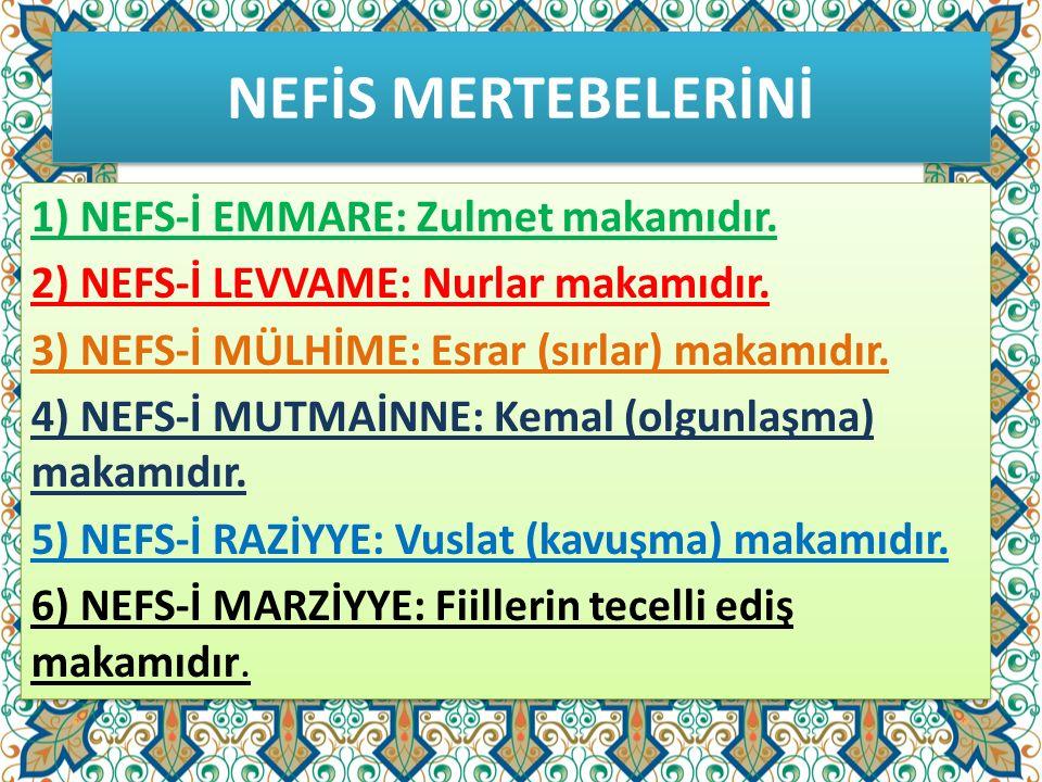 NEFİS MERTEBELERİNİ