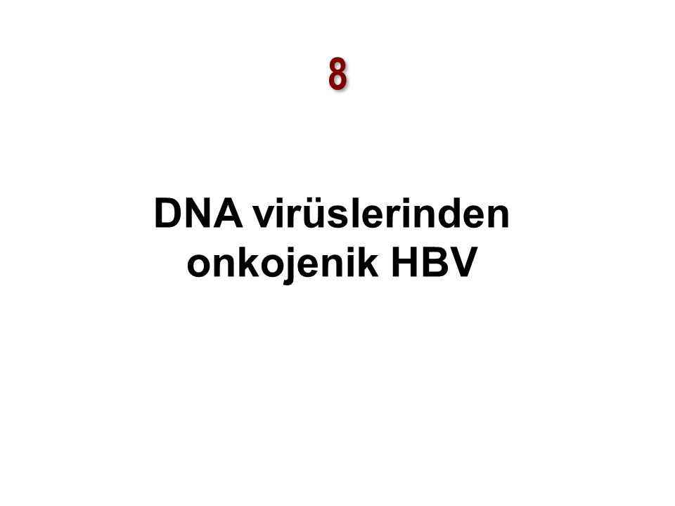 DNA virüslerinden onkojenik HBV