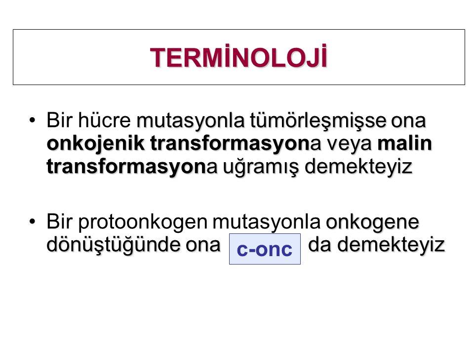 TERMİNOLOJİ Bir hücre mutasyonla tümörleşmişse ona onkojenik transformasyona veya malin transformasyona uğramış demekteyiz.