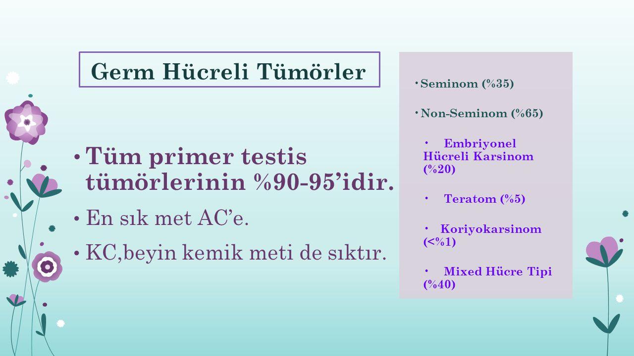 Tüm primer testis tümörlerinin %90-95'idir.