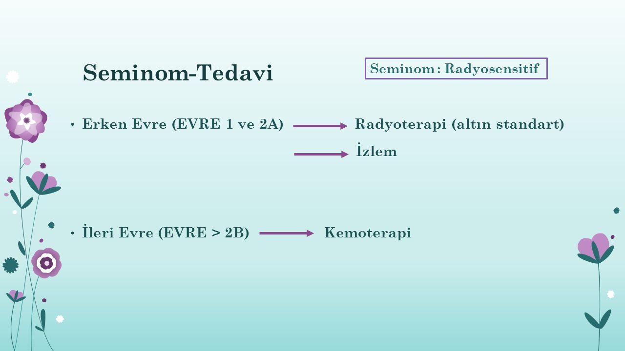 Seminom-Tedavi Erken Evre (EVRE 1 ve 2A) Radyoterapi (altın standart)