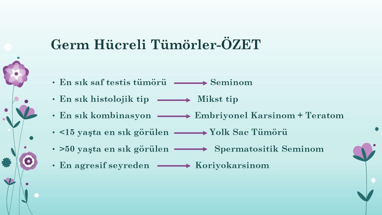 Germ Hücreli Tümörler-ÖZET