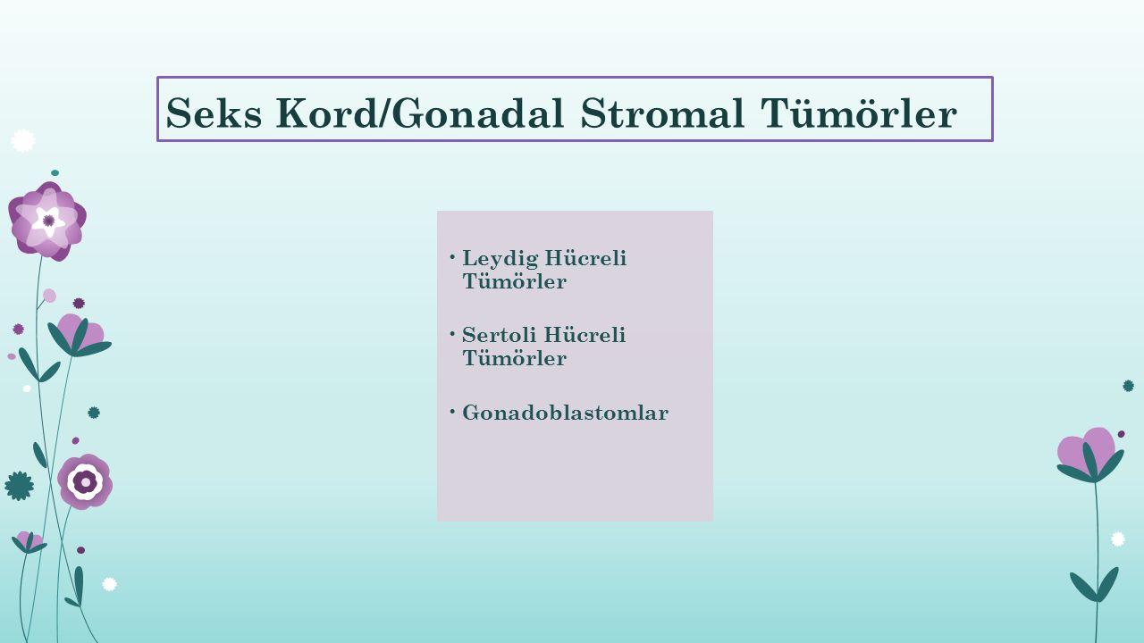 Seks Kord/Gonadal Stromal Tümörler