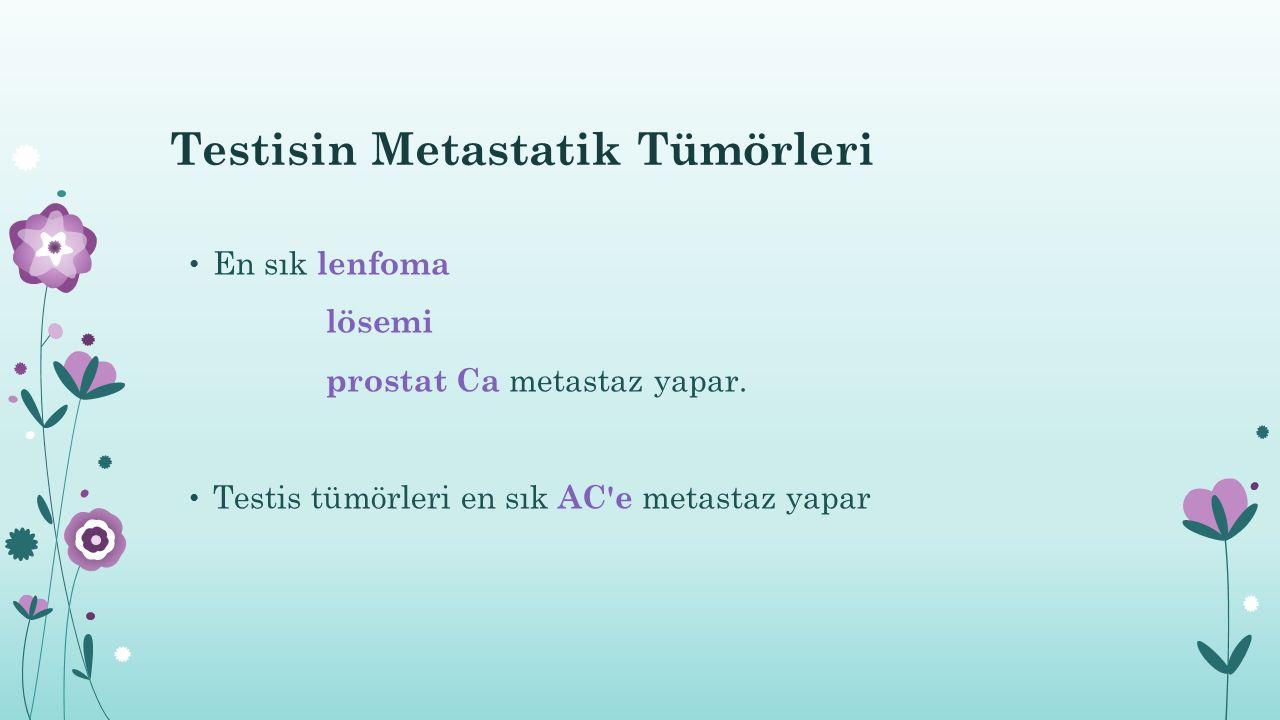 Testisin Metastatik Tümörleri