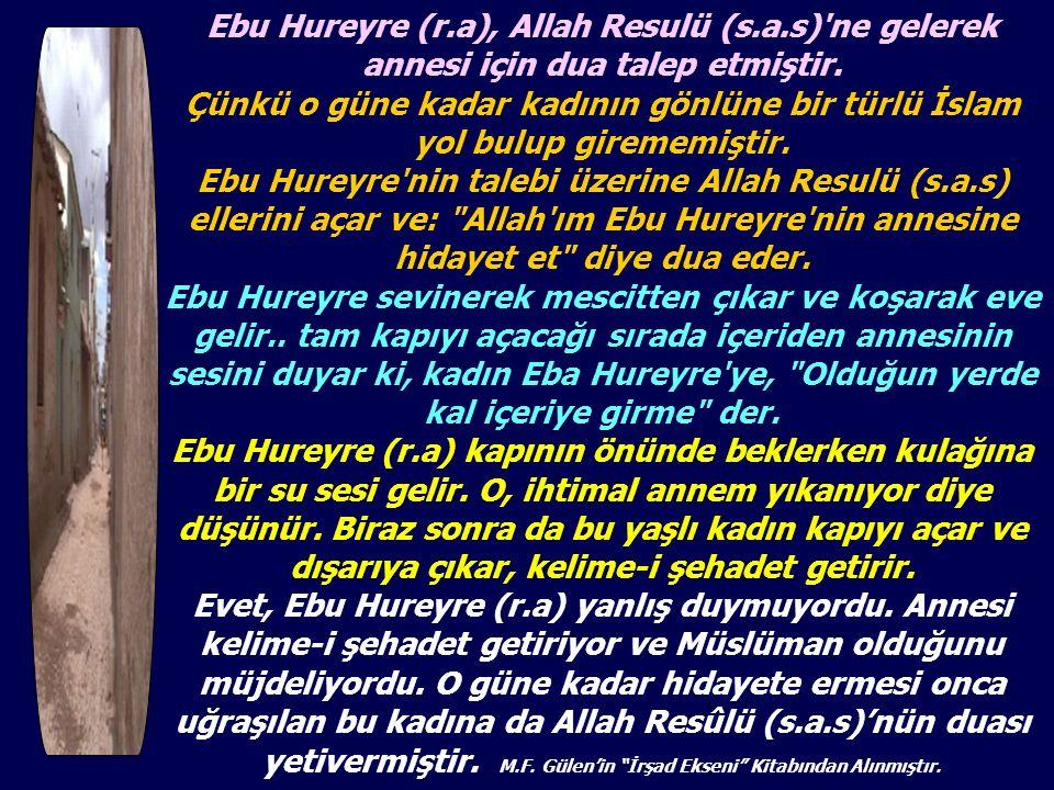 Ebu Hureyre (r. a), Allah Resulü (s. a