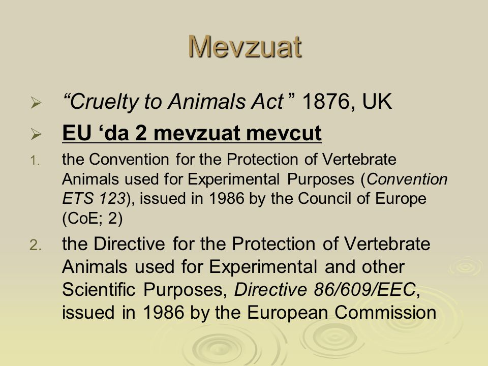 Mevzuat Cruelty to Animals Act 1876, UK EU 'da 2 mevzuat mevcut