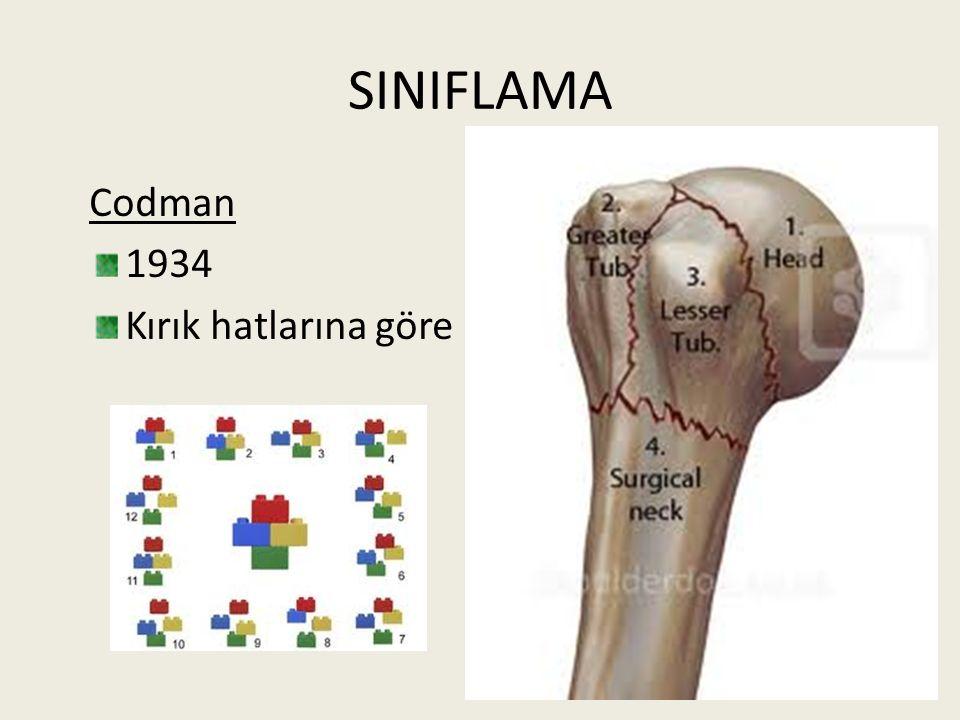 SINIFLAMA Codman 1934 Kırık hatlarına göre
