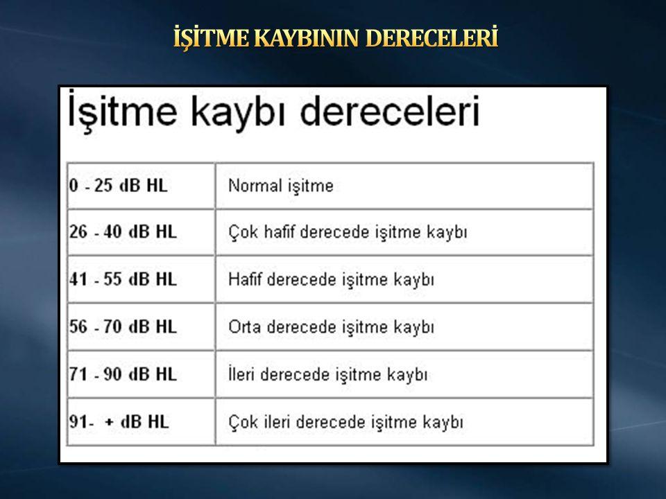 İŞİTME KAYBININ DERECELERİ