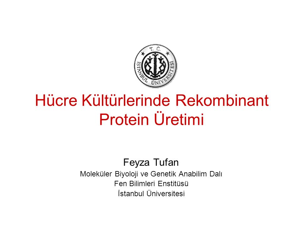 Hücre Kültürlerinde Rekombinant Protein Üretimi