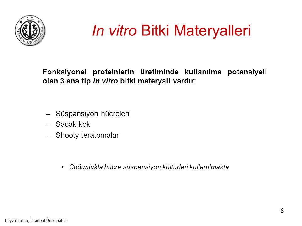 In vitro Bitki Materyalleri