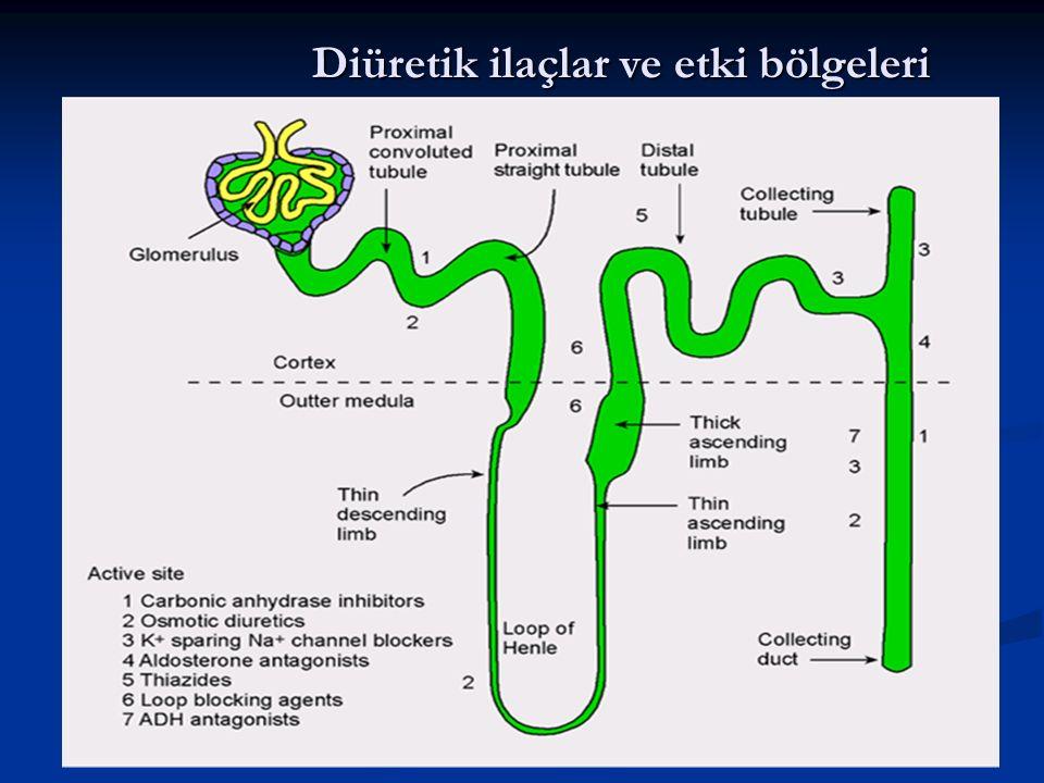 Diüretik ilaçlar ve etki bölgeleri
