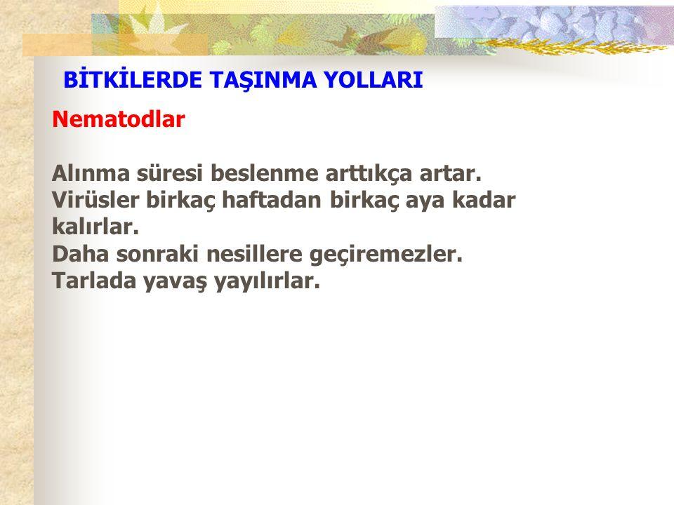 BİTKİLERDE TAŞINMA YOLLARI