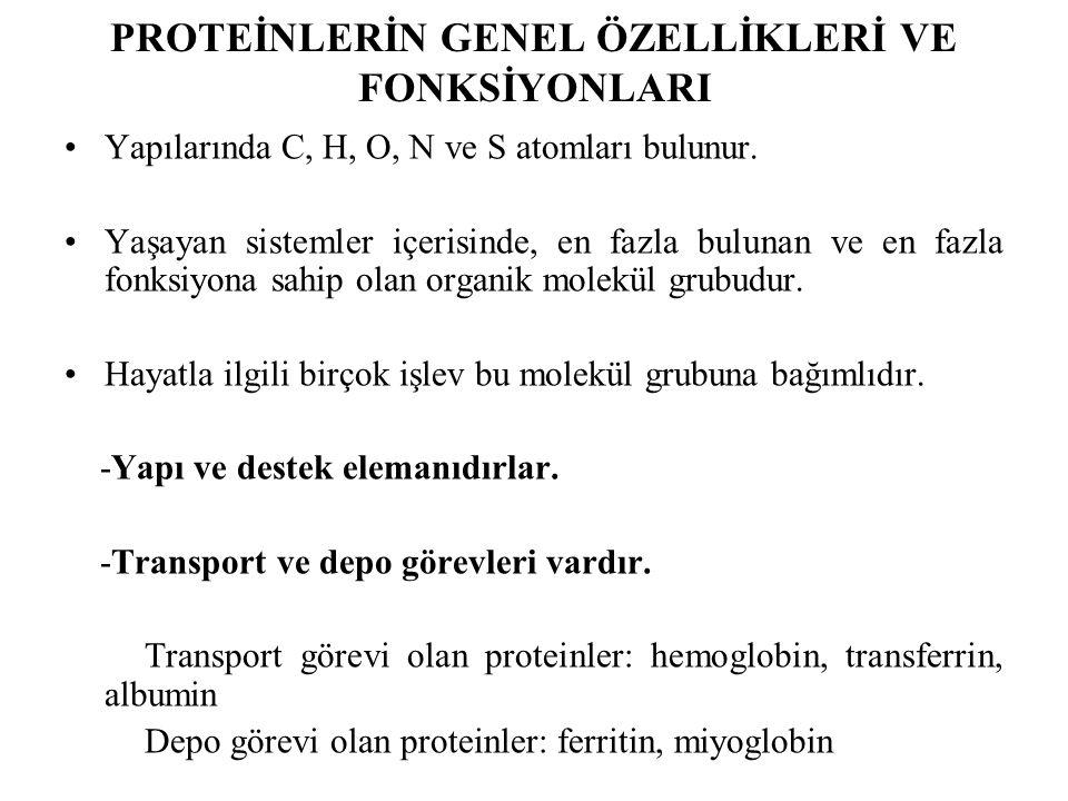 PROTEİNLERİN GENEL ÖZELLİKLERİ VE FONKSİYONLARI