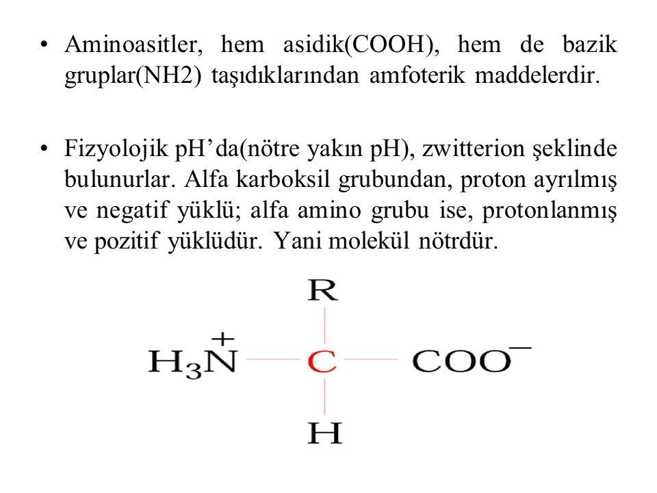 Aminoasitler, hem asidik(COOH), hem de bazik gruplar(NH2) taşıdıklarından amfoterik maddelerdir.