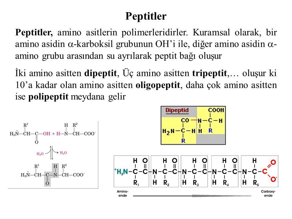 Peptitler