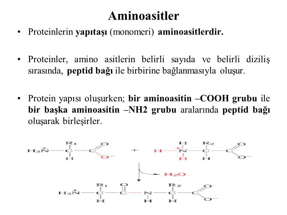 Aminoasitler Proteinlerin yapıtaşı (monomeri) aminoasitlerdir.