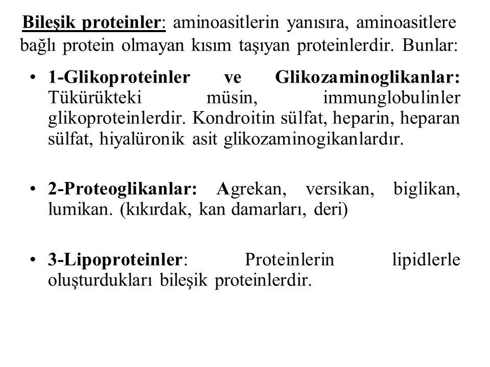 Bileşik proteinler: aminoasitlerin yanısıra, aminoasitlere bağlı protein olmayan kısım taşıyan proteinlerdir. Bunlar: