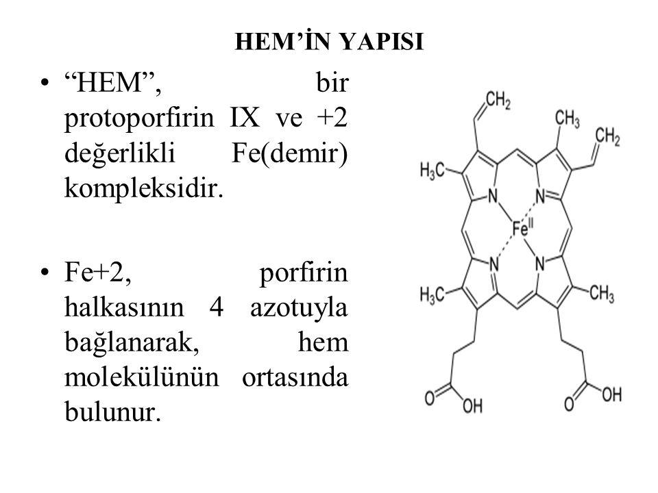 HEM , bir protoporfirin IX ve +2 değerlikli Fe(demir) kompleksidir.