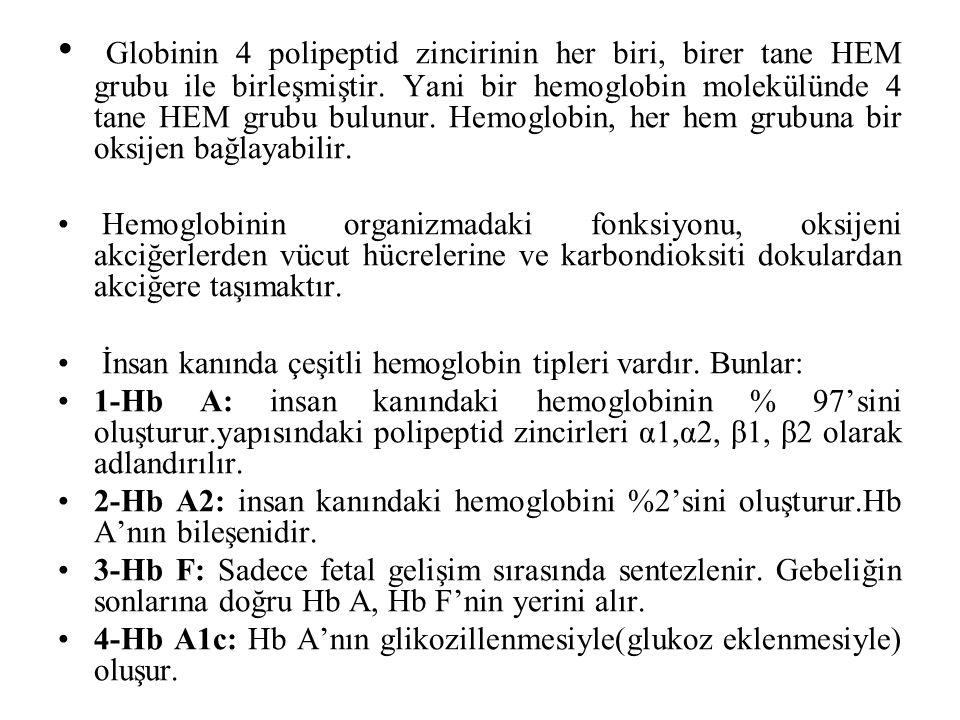 Globinin 4 polipeptid zincirinin her biri, birer tane HEM grubu ile birleşmiştir. Yani bir hemoglobin molekülünde 4 tane HEM grubu bulunur. Hemoglobin, her hem grubuna bir oksijen bağlayabilir.