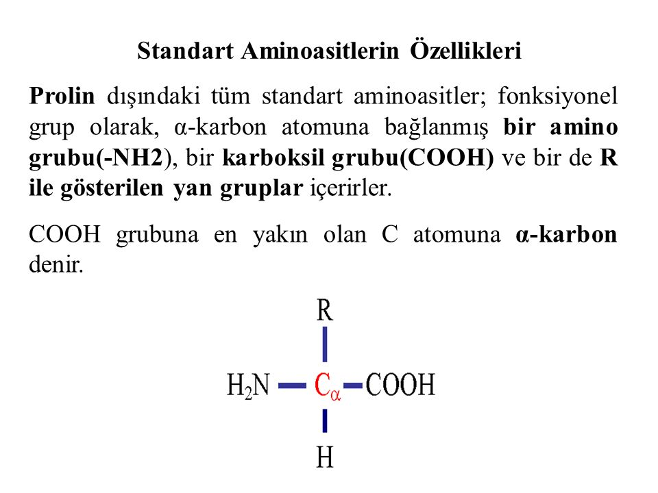 Standart Aminoasitlerin Özellikleri